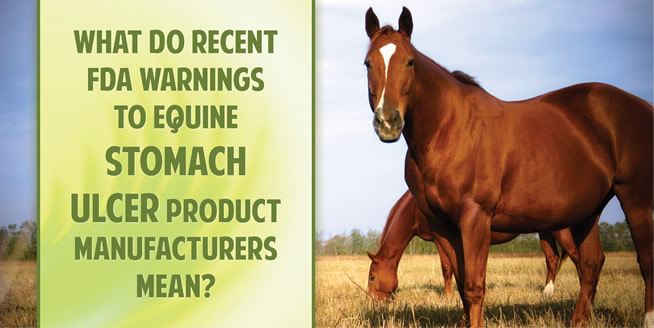 What Do Recent FDA Warnings to Equine Stomach Ulcer Product Manufacturers Mean?